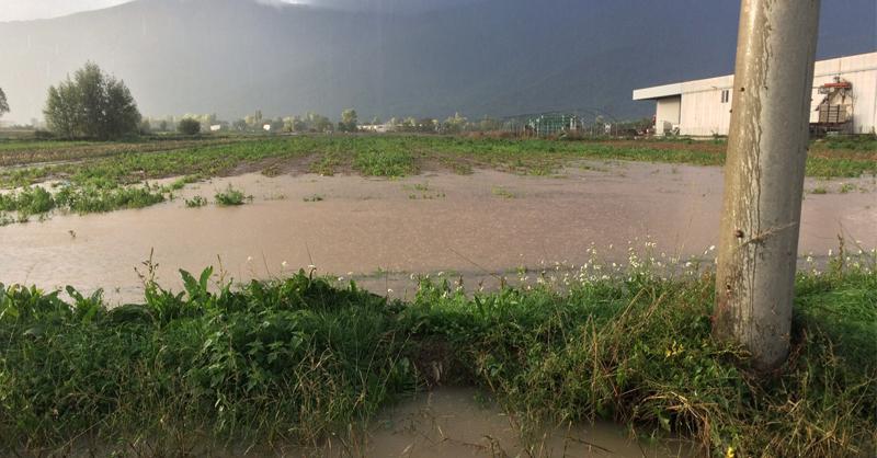 alluvione Fucino