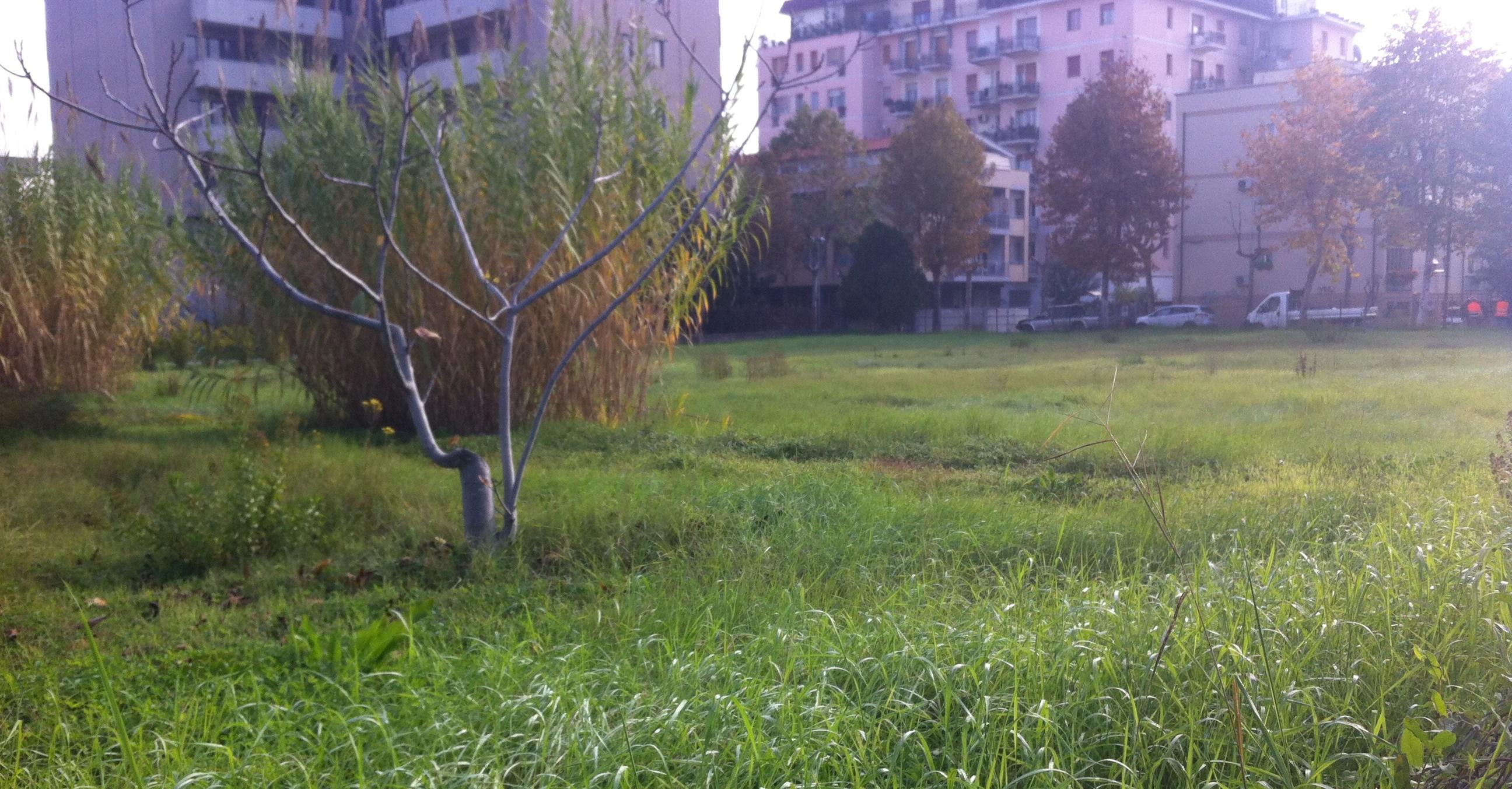 Pescara via Raffaello giardini orti comunitari
