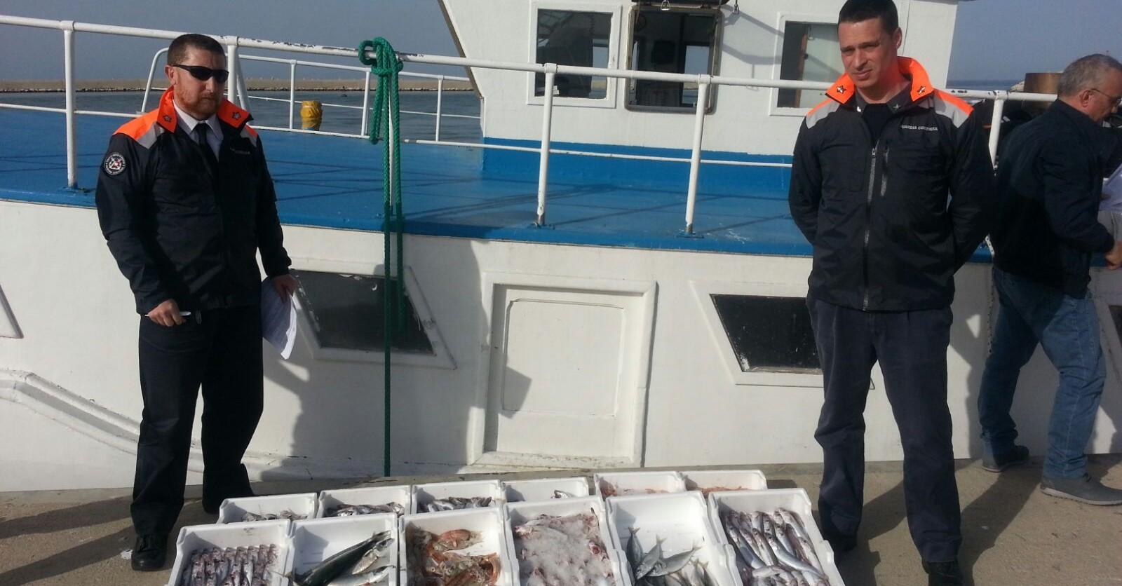 Prodotto ittico sequestrato