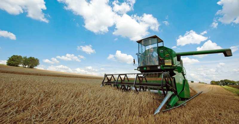 Agricoltura in Abruzzo
