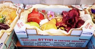 Packaging antispreco, cartone attivo per frutta e verdura